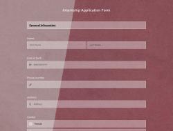Internship Application Form Template
