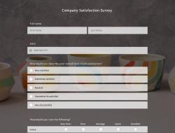Company Satisfaction Survey Template